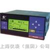 迷你液晶无纸记录仪HR-LCD-XR