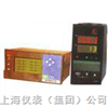 无纸记录仪表WP-LCD-R