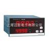 ZW5421VZW5421V高频电量表